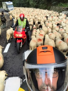 Roemenië met Stelvio Motorreizen