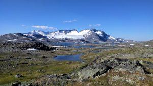 Uitzicht vanaf weg 55 in Noorwegen